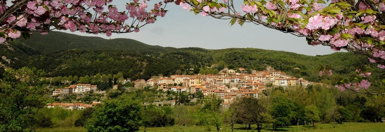Vue panoramique ville Amélie-les-Bains Palalda